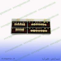 دست دندان berelian a1