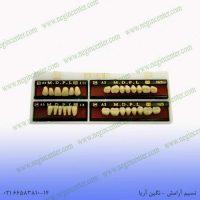 دست دندان berelian a3