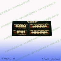 دست دندان yaghoot a1