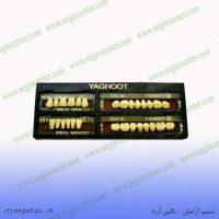 دست دندان yaghoot a3